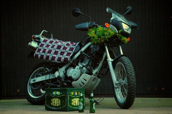 F 650 Picknick