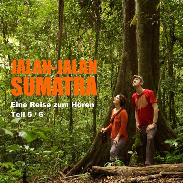 Jalan-jalan Sumatra Teil5